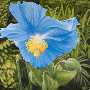Blue Poppy RGB 1