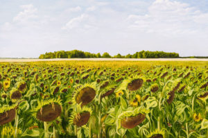 Field of Dreams KNASH16 24x36